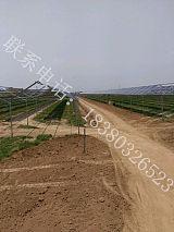 地面互补光伏epc电站投资、农光互补电站EPC总承包