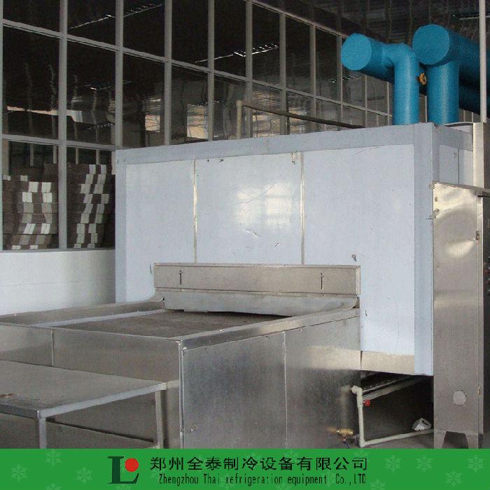 鹤壁平面网带式蔬菜速冻隧道厂家