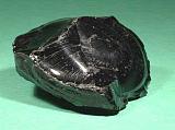 佛山高富70A 2530元/吨,茂名石化70A 2560元/吨