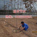 昆明苹果水肥一体化滴灌技术;