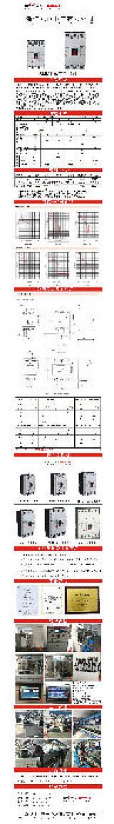 塑壳断路器 RMM1-100L/3300(图);
