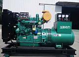 貴州柴油發電機組 鈍銅柴油發電機組直銷 50kw千瓦小型發電機組