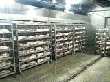 供应肉类解冻机|肉类解冻设备|猪牛羊鸡肉解冻机;