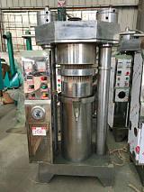 600大型高壓液壓榨油機 液壓壓榨機廠家 榨油機商用