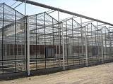 承接全国范围内温室大棚工程智能温室大棚、连栋温室大棚、玻璃温室大棚;