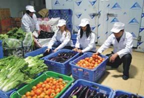 东莞大朗蔬菜配送公司,大朗送菜公司,大朗蔬菜批发价格