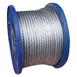供應優質鍍鋅鋼絲繩