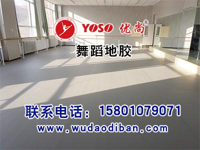 北京 优尚舞蹈地胶 国家大剧院首选地胶 颜色可定制