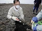 福島食品解禁?土壤污染是關鍵;