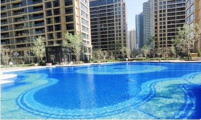 大型泳池专业规划