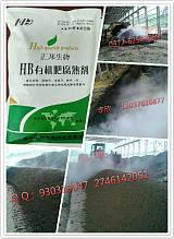 河南汇邦滤泥发酵菌种发酵糖厂滤泥-微生物菌剂厂家