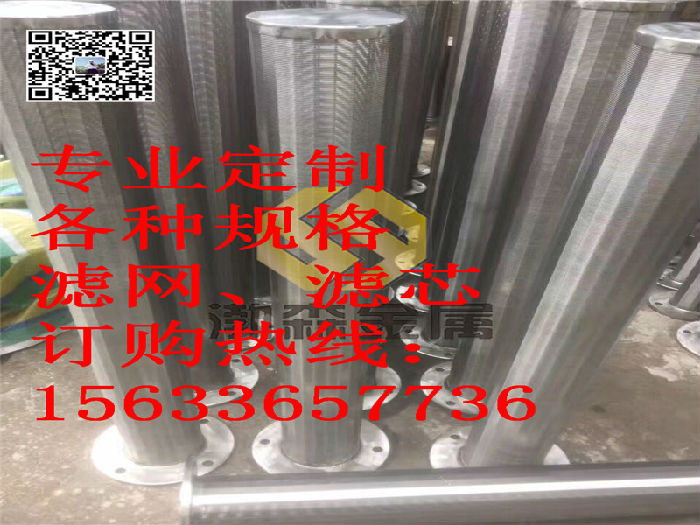 不锈钢绕丝滤芯布水器支管