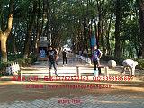 鹹寧學校阻車升降路樁 遙控升降路樁 單位大門擋車路樁 一體式電動升降;