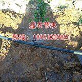 广西园林灌溉可调可关闭喷滴一体滴头;