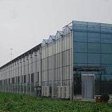 供青海格尔木玻璃阳光大棚和德令哈阳光大棚