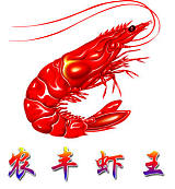 武漢農豐現代水產養殖有限公司;