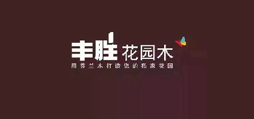 深圳丰胜景观工程bwin手机版登入;