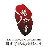 浙江嘉兴杨柳青文化传媒有限公司;