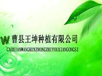 曹县王坤种植有限公司