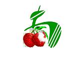 深圳市南荔农业有限公司;