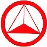 强力控股集团股份有限公司;