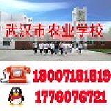 武汉市农业学校;