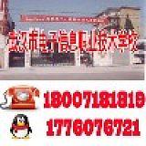 武漢市電子信息職業技術學校;