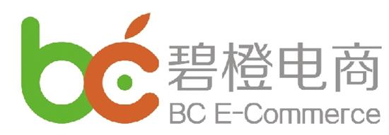 杭州碧橙网络技术有限公司