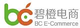 杭州碧橙網絡技術有限公司LOGO;
