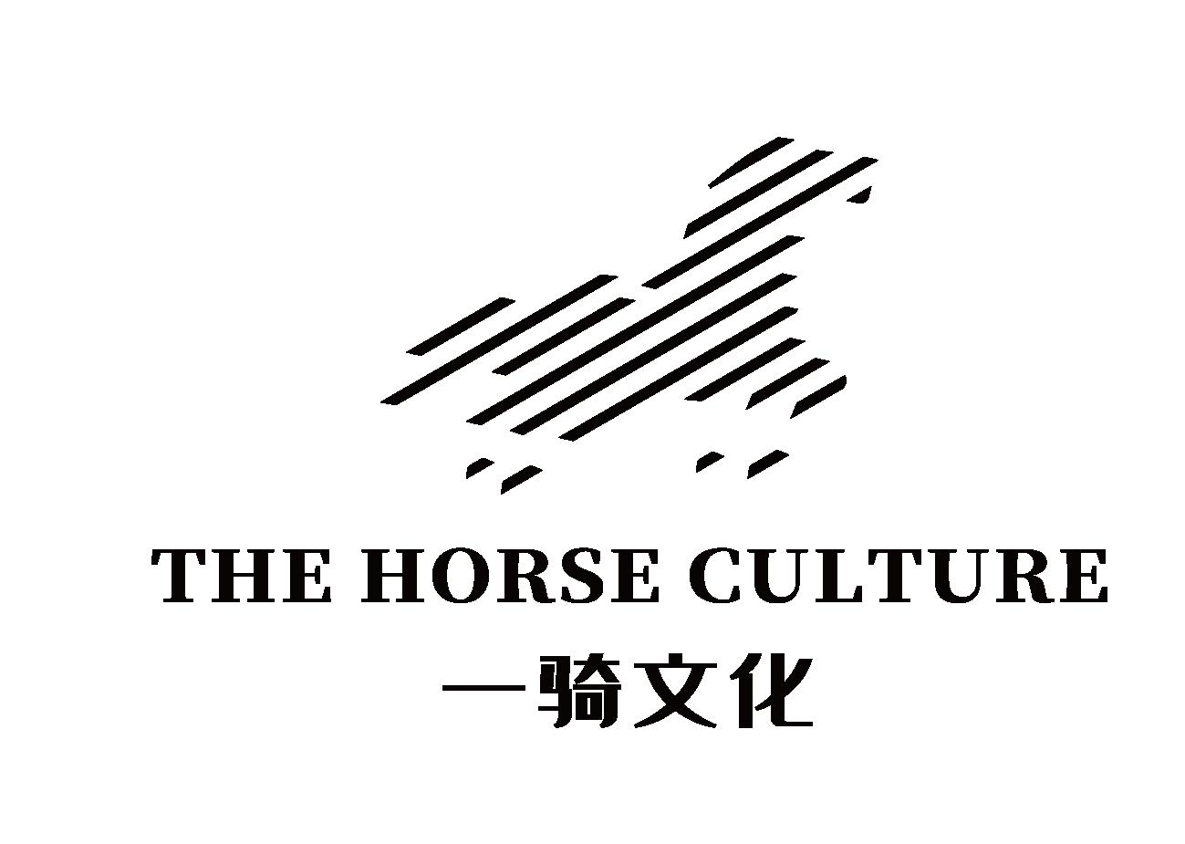 惠州一骑文化传媒淘宝彩票走势图表大全;