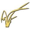 河南金兰园林景观工程bwin客户端下载;