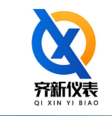 安徽齊新儀表科技有限公司;