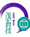 大同市茂宏网络科技有限公司