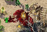 传奇爆服版游戏中护体神盾怎么才能兑换