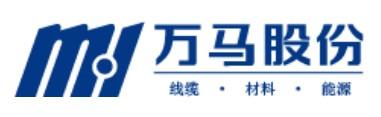 浙江万马股份bwin手机版登入公司简介